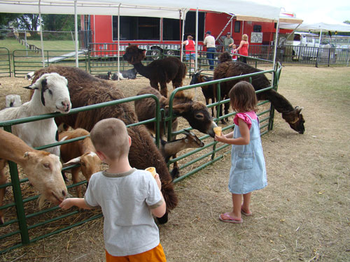 Whispering Pines Mobile Zoo petting zoo set up