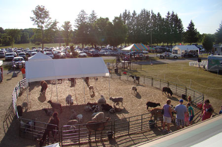 Example of typical petting zoo set up.